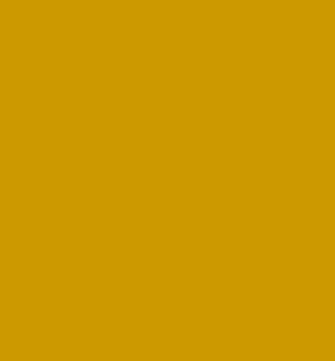 Delia Durrer